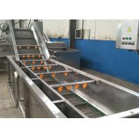 China Fruit Vegetable Washing Equipment For Beef Tripe Prickly Pear Cherry Tomato on sale