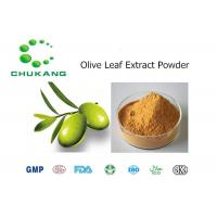 Quality Olive Leaf Plant Extract Powder Oleuropein CAS 32619 42 4 Olea Europaea L. for sale