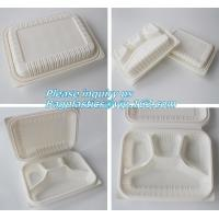China blister packaging Packaging Tray, airline fast food trays with handle, cornstarch food trays wholesale