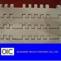 China Plastic Sideflex Flat-top Chain , type 880TAB-K325 , 880TAB-K325 , 882TAB-K500 , 882TAB-K600 wholesale