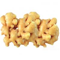 China Chinese ginger wholesale, provide fresh ginger for ginger buyers, 100g up wholesale
