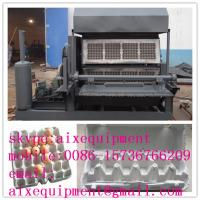 China waste paper recycled egg tray pulp molding machine wholesale