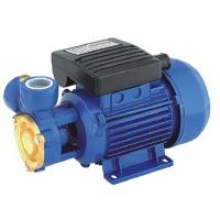 China Vortex Electric Peripheral Water Pump 0.37kw Single Phase For Household Area wholesale