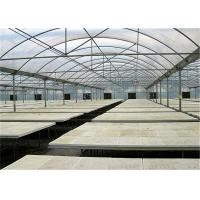 China Easy Installed Plastic Garden Greenhouse , Large Plastic Greenhouse For Tomato wholesale