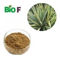 China Nutritional Feed Additives Yucca Extract Powder 60% Sarsaponin Solvent Extraction wholesale