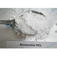 China Local Anesthetic Benzocaine hydrochloride Powder For surgery and Treatment of Toothache wholesale