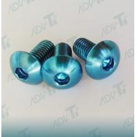 China Corrosion Resistant Titanium Fastener , Decorative Shining Blue Titanium Screws wholesale