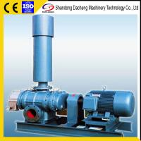 China DSR50 Excellent quality hot selling biogas three lobes roots blowers on sale