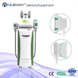 China cryolipolysis fat reducing machine / cryolipolysis freezing slimming machine / cavitation wholesale