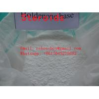 China Testosterone Propionate Safe Delievry Testosterone Steroid Purity 99.9% Best Quality wholesale
