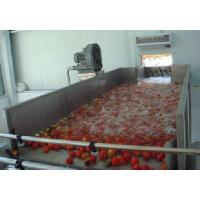China Industrialized Fruit And Vegetable Processing Line For Date Washing And Elevator wholesale