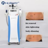 China Fat freezing 360 degree criolipolisis 4 handles liposuction belly fat reducing machine wholesale