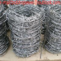 China where can i buy barbed wire fence/home depot barbed wire fencing/spiral barbed wire/barbed wire quotes on sale