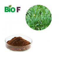 China 90% Indirubin Feed Additives In Poultry Nutrition Indigowoad Leaf Extract wholesale