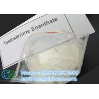 China Testosterone Enanthate Testosterone Steroid Powder Test Raw Steroid Powder wholesale