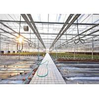China 3 - 5m Gutter Height Hydroponic Greenhouse Great Heat Retaining Property wholesale