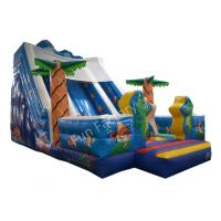 China Sea World Outdoor Inflatable Water Slide For Kids , Inflatable Pool Water Slide wholesale