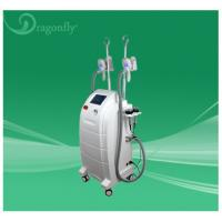 China Reducer & Belly Fats Reducing Freeze Fat Cryolipolysis Machine for Salon wholesale