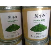 China Spirulina Powder Food Grade wholesale