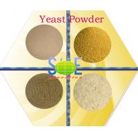 China Yellowish Feed Grade Dry Yeast Powder CAS 8013-01-2 With Special Aroma SYE-PO50 wholesale