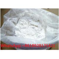 China Testosterone Decanoate 5721-91-5 Test Deca injection raw powder wholesale
