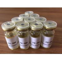 China 10ml/Vial Testosterone Enanthate Steroid Oil 315-37-7 For Building Muscle wholesale