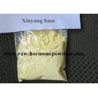 China 99% Raw Hormone Powder Xinyang base for Male Sexual Function Decline on sale