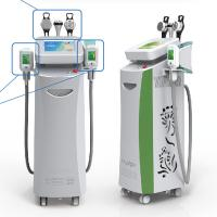 China Coolsculpting Freezing Fat Cryolipolysis Machine Leg , Arms, Belly Fat Removing wholesale