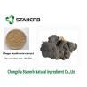China Anti-Tumor Chage extract Male Enhancement Powder Mushroom Extract Powder wholesale