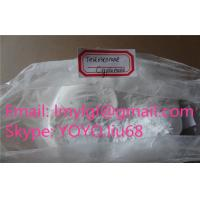 China CAS No 58-20-8  Injectable Steroids Testosterone Powder Source Testosterone Cypionate For Muscle Growth Test Cyp wholesale