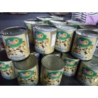 China Canned Whole Mushroom In Tins 24*425ml / NW. 425g DW. 200g 180g or Big Size wholesale