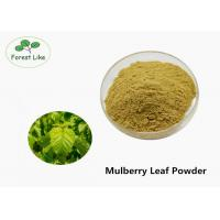 China Natural Herbal Pure Mulberry Leaf Powder 80 Mesh For Skin Whitening Medicine on sale