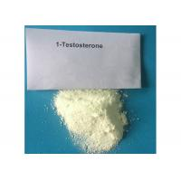 China Safe 1-Testosterone Anabolic Steroid Raw Hormone Powders White Odourless Solid CAS 65-06-5 wholesale