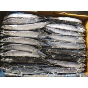 China Hot sale Whole round size #3 BQF Frozen Pacific Saury Fish Cololabis Saira wholesale