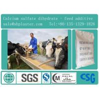 China feed grade dihydrate calcium sulfate wholesale