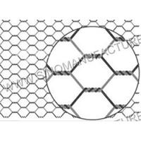 China Hexagonal Wire Netting wholesale