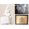 China Injectable 100mg/ml Shortest - Estered Testosterone Testosterone Propionate wholesale