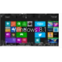 China Microsoft Certified Windows 8.1 Enterprise Upgrade License With Multiple Language wholesale
