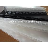China Con Pearl - PP Twin-Wall Sheet black on sale