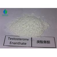Quality Test E CAS:315-37-7 Raw Anabolic Powder Testosterone Enanthate for Muscle Growth for sale
