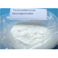 China Testosterone Isocaproate Steroids Bodybuilding Enhancement CAS 15262-86-9 wholesale