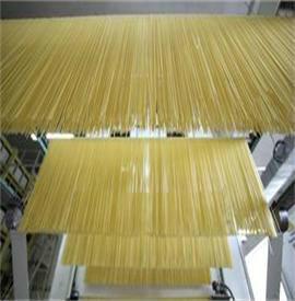 China organic HACCP/ISO certified jasmine white rice spaghetti/linguine wholesale