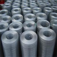 China Galvanized welded wire mesh with low price wholesale