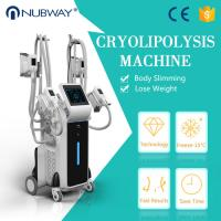 China Cryolipolysis Cool Shaping Machine  Remove Belly Fat for weight loss slimming on sale