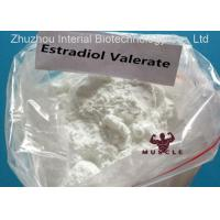 China Female Sex Hormone Anti Estrogen Steroids Estradiol Valerate for Health Care CAS 979-32-8 wholesale
