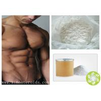 China Anabolic Steroid Raw Hormone Testosterone Enanthate Powder for muscle growth wholesale