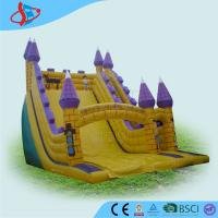 China Purple Huge Residential Inflatable Water Slides For Children Playground wholesale