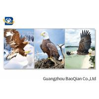 China Wall Hanging Decorative Beautiful Flying Eagle 3d Flip Moving Home / Hotel Wall Decoration wholesale