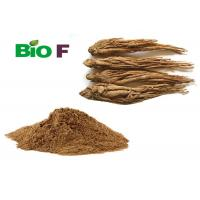 Pure Powdered Herbal Extracts ligustilide Powder From Angelica Extract