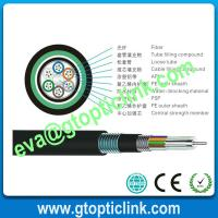 China Double Steel Tape PE sheath Armored FOC Cable GYTS53 on sale